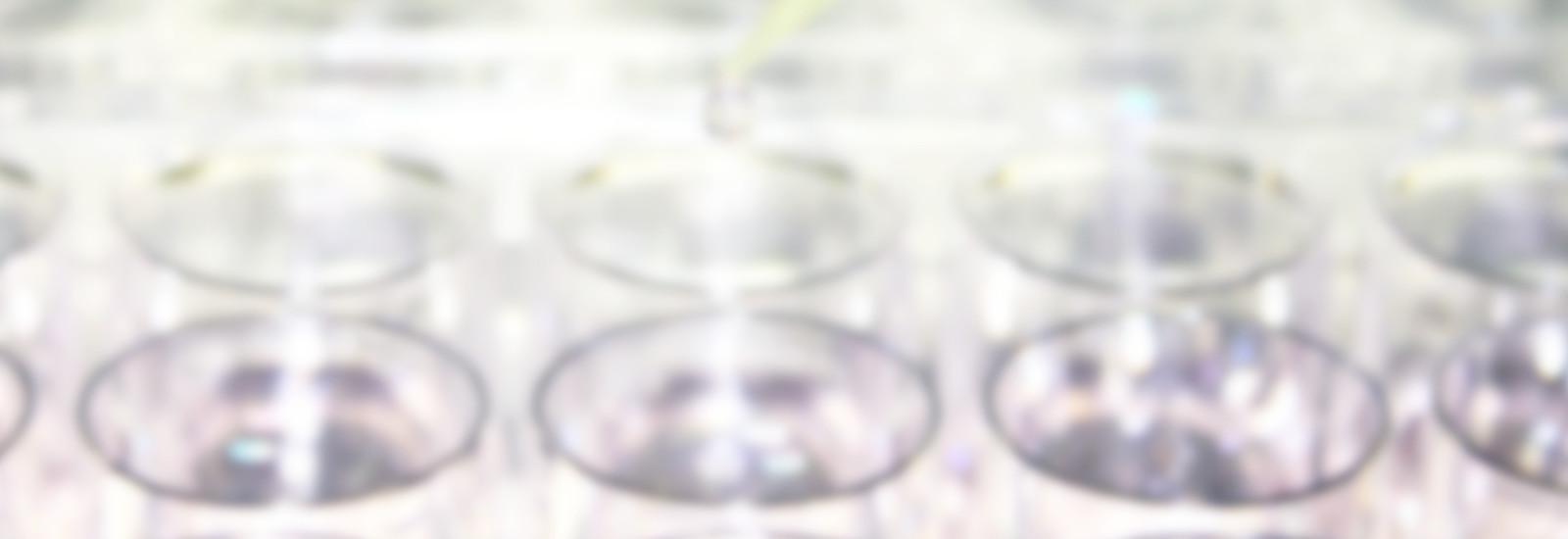 関連学会発表(PXB-cells)